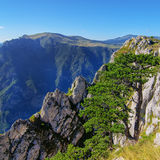 Wonderful view to mountains in the national park Durmitor. Montenegro Balkans Europe. Beauty world. Autumn Landscape in a blue sky Stock Photo