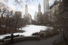 New york, usa central park royalty free stock image