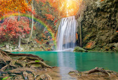 Wonderful Waterfall with rainbows and red leaf in Deep forest Royalty Free Stock Photography
