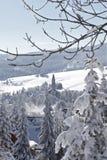 Wonderful winter Royalty Free Stock Photos