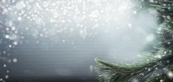 Wonderful winter background with fir branches, snow and bokeh lighting. Winter holidays and Christmas. Concept stock images