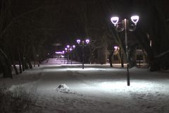 Wonderful winter evening landscape. Illuminated alley in the park.  stock photos