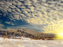 Wonderful winter landscape Royalty Free Stock Images