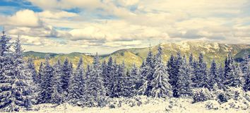 Wonderful winter landscape. Christmas scenery, snow covered frosty trees in a mountain. overcast clouds inthe sky, on the bascgrou. Nd. Winter background stock photos