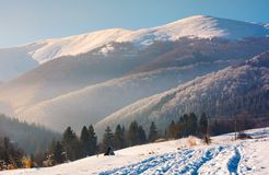 Wonderful winter landscape in mountains. Beautiful countryside with snow covered mountains in the distance. location Pylypets, TransCarpathian region, Ukraine Stock Images