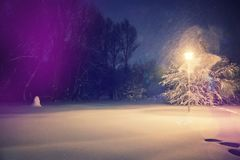 Wonderful winter landscape. Winter scenery,snowstorm in a night city park. Picturesque and gorgeous wintry scene. inctagram toning. retro style Stock Photo