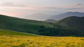 Colorful summer landscape in the Carpathian mountains Royalty Free Stock Photography