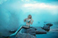 Wonderful young mermaid is relaxing, warming herself in the evening sun Stock Photography