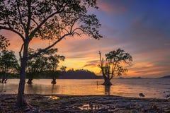 Wonderfull Indonesia de la puesta del sol Moment7 Batam Bintan imagen de archivo