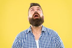 Wondering every time. Guy surprised face expression. Hipster emotional surprised expression. Rustic surprised macho. Surprising news. Man bearded hipster royalty free stock photo