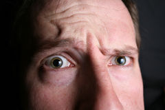 Wondering eyes, closeup. And inquisitive Royalty Free Stock Image