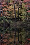 A wondrous autumnal reflection in the Cleveland Metroparks - Ohio - USA. Cleveland Metroparks is an extensive system of nature preserves in Greater Cleveland Royalty Free Stock Image