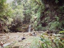 Wong Adai Waterfall Fotografering för Bildbyråer