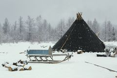 Woningsherders in de winter stock foto