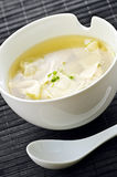 wonton супа стоковое изображение