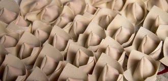 Wonton or Chinese Dumpling Royalty Free Stock Photo