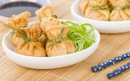 Wonton Royalty Free Stock Photography