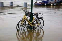 Wonton rzeczna powódź w Paryż na Czerwu 02, 2016 Obraz Royalty Free