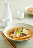 Wonton and Vegetable Soup Royalty Free Stock Image
