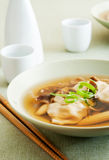 Wonton and Vegetable Soup Royalty Free Stock Photos