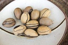 Wood ägg Arkivfoto