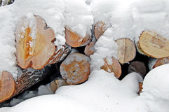 Wood. Section of harvested timber under a layer of snow Royalty Free Stock Photography