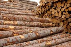 Wood Stock Photography