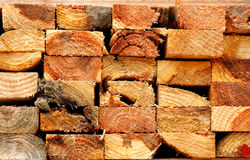 Free Wood Royalty Free Stock Image - 2447306