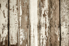 Wood. Texture with natural patterns royalty free stock photo