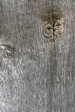 Wood. En board with branch place royalty free stock image
