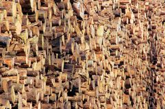 Wood. For combustion in a biomass boiler royalty free stock image