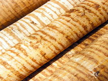 Wood. Diagonal-recumbent, peeled wooden trunks, as a background for wooden energy royalty free stock images