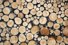 Free Wood Royalty Free Stock Images - 51542739