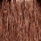 Wood. Abstracted tree texture Royalty Free Stock Images