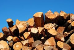 Wood 70a. Stock of wood for heating Royalty Free Stock Images