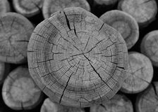 Wood in abstract composition Stock Images