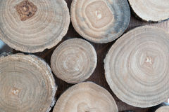 Wood. Abstract photo of a pile of natural wooden logs background, top view. Round teak wood stump background. Tree stump background. Pile of wood logs stumps Stock Photos