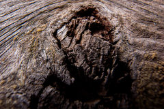 Wood-Abstract Photography Royalty Free Stock Photos