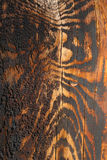 Wood acquired tiger coloring as it aged Royalty Free Stock Photo