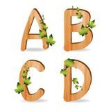 Wood alphabet with branch green leaves. Vector template design royalty free illustration