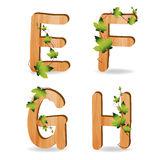 Wood alphabet with branch green leaves. Vector template design stock illustration
