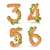Wood alphabet number with branch green leaves. Vector template design royalty free illustration