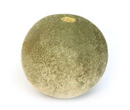 Wood apple Royalty Free Stock Photography