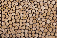 Wood arranged transverse section Stock Photography