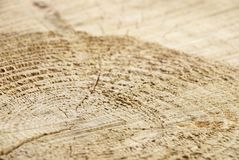 Wood as background Stock Photography