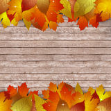 Wood Autumn Notice Royalty Free Stock Photography