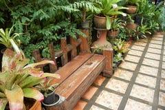 Wood bänkställe i trädgård Arkivfoton