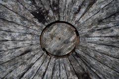 Wood bästa sikt för tabell Royaltyfria Bilder