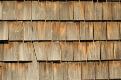 Wood backgound Royalty Free Stock Image