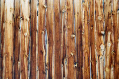 Wood Backgriond Stock Image